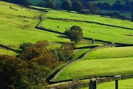 paysage-yorkshire