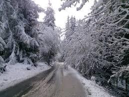 montana hiver