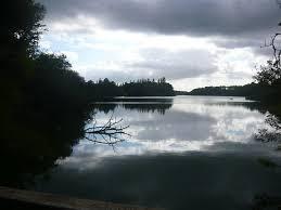 étang noir