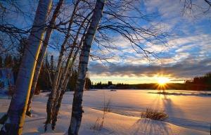 winter-landscape-1145816_640