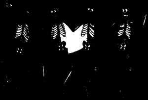 skeletons-303877__340