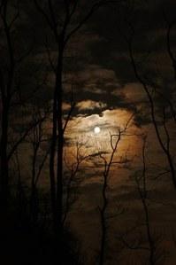 full-moon-1372783__340